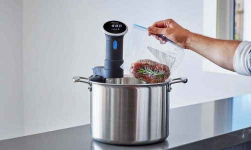 Anova Culinary Precision Cooker Review