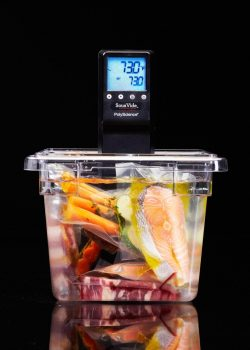 polyscience chef series sous vide immersion circulator review - Immersion Circulator