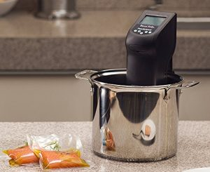 PolyScience CREATIVE Series Sous Vide Immersion Circulator Review