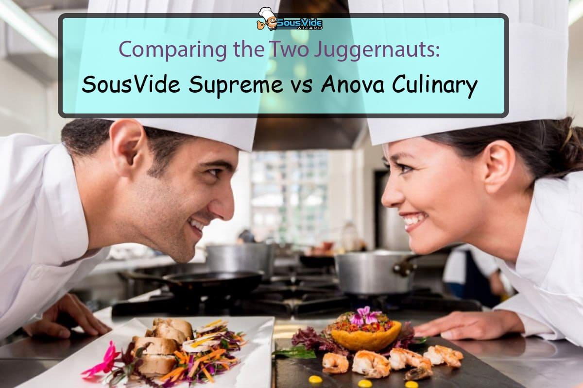 Comparing the Two Juggernauts - SousVide Supreme vs Anova Culinary