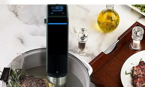 Sous Vide By USA SCITECH Review