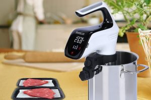 Review of the The Sous Vide Travellortech Precision Cooker Immersion Circulator