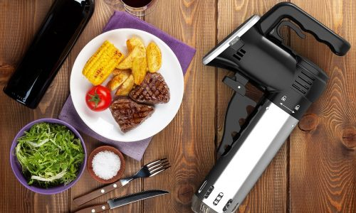 Wancle Sous Vide Product Review